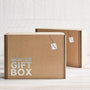 winter gift box