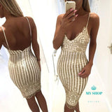 Gold Shiny Dress Accesorios