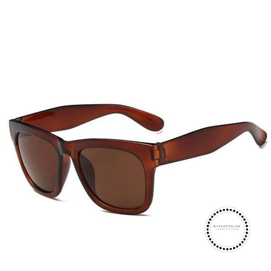 Sunglasses Men Brown / Color Accesorios