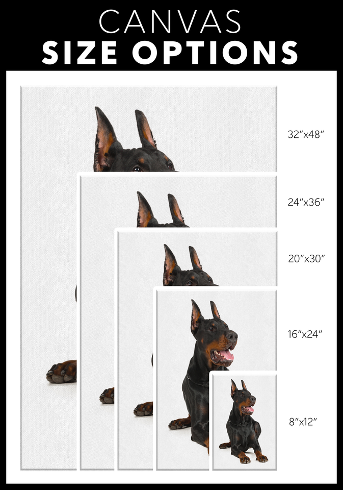 Doberman Canvas Wall Art