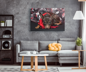 Holiday Chihuahua Canvas Wall Art