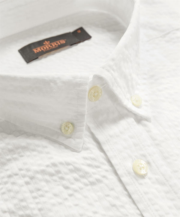 LUCAS BUTTON DOWN SHIRT  White
