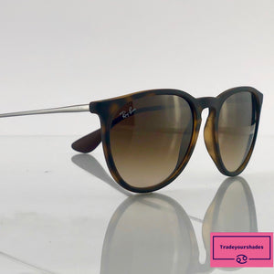 Ray Ban  RB4171 Erika Sunglasses