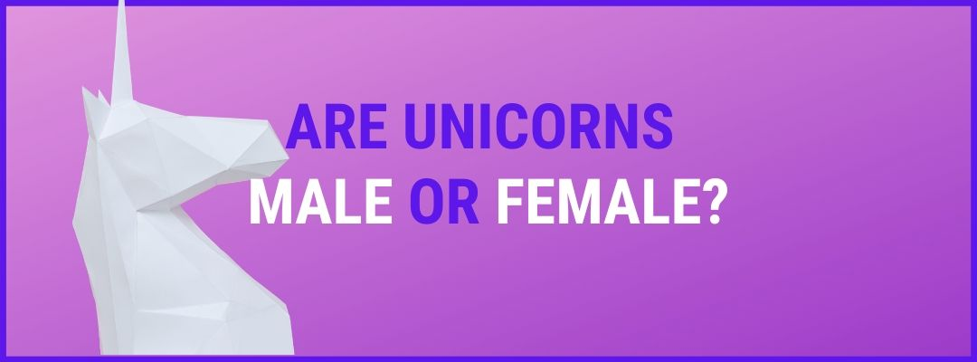 unicorns male or female