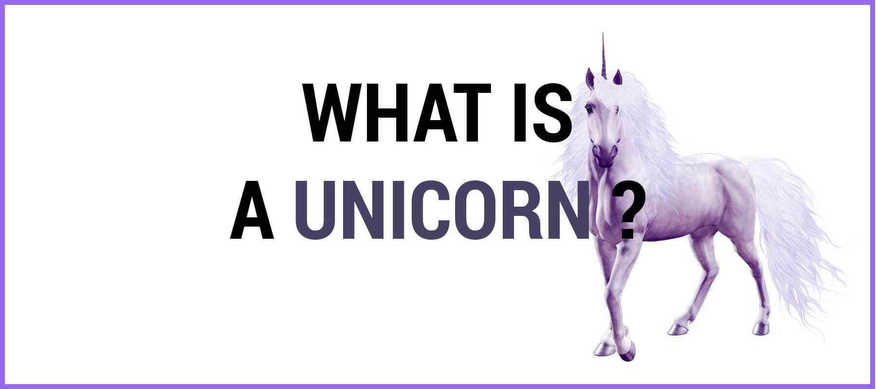what is unicorn definition