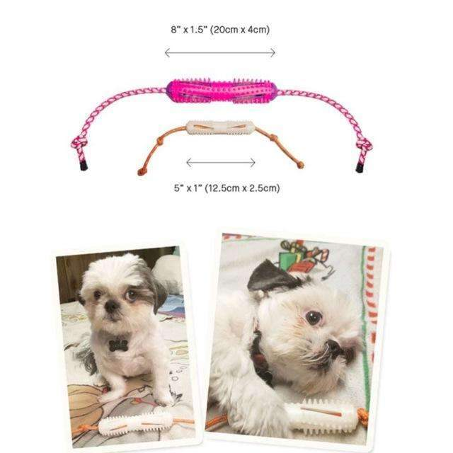 BrushyDog ™ - Dog Rope With Brush - vogue Verified