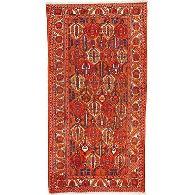 "Authentic Persian Rug bakhtiar Traditional Style Hand-Knotted Indoor Area Rug with Natural Wool and Cotton  9'10""  X  5'1"" ABCR02773"