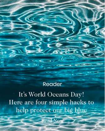 It's World Oceans Day! Here are four simple hacks to help protect our big blue