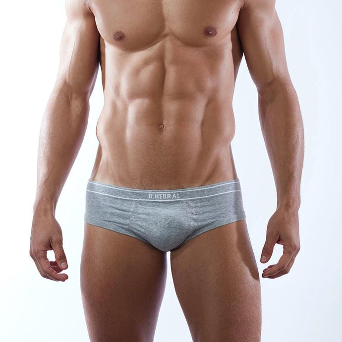 D.Hedral Ace Brief - Grey