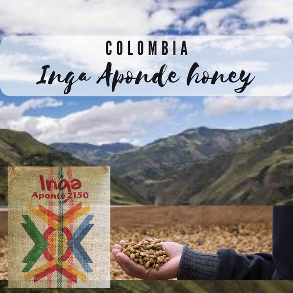 COLOMBIAN-COFFEE-S-COFFEES-INGA APONTE-250GR