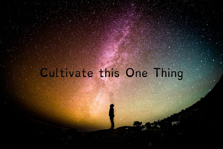 Cultivate this One Thing
