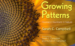 Growing Patterns, Boco Learning, Boco Math, Math Learning, Picture Book