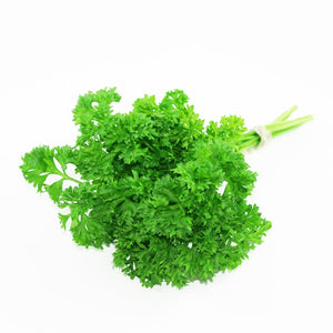 Organic Curly Parsley (Perejil) - Dosner Organic Farms