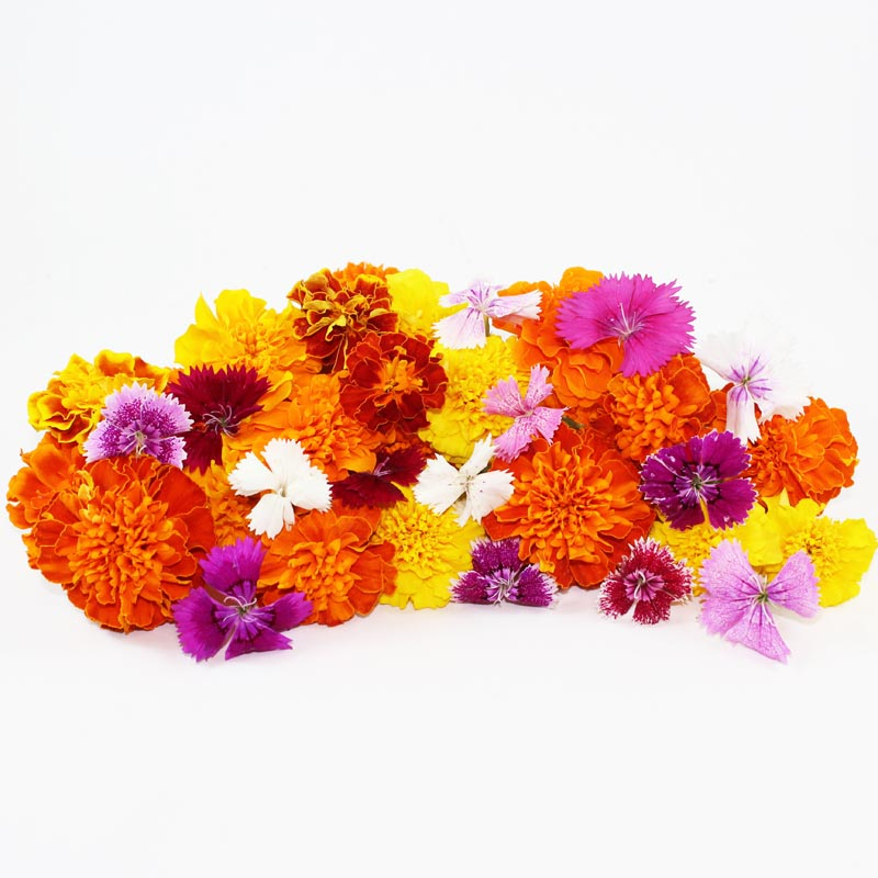 ORGANIC EDIBLE MIXED FLOWERS - Dosner Organics Farms