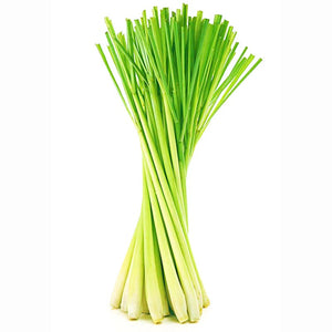 Organic Lemon Grass - Dosner Organics Farms