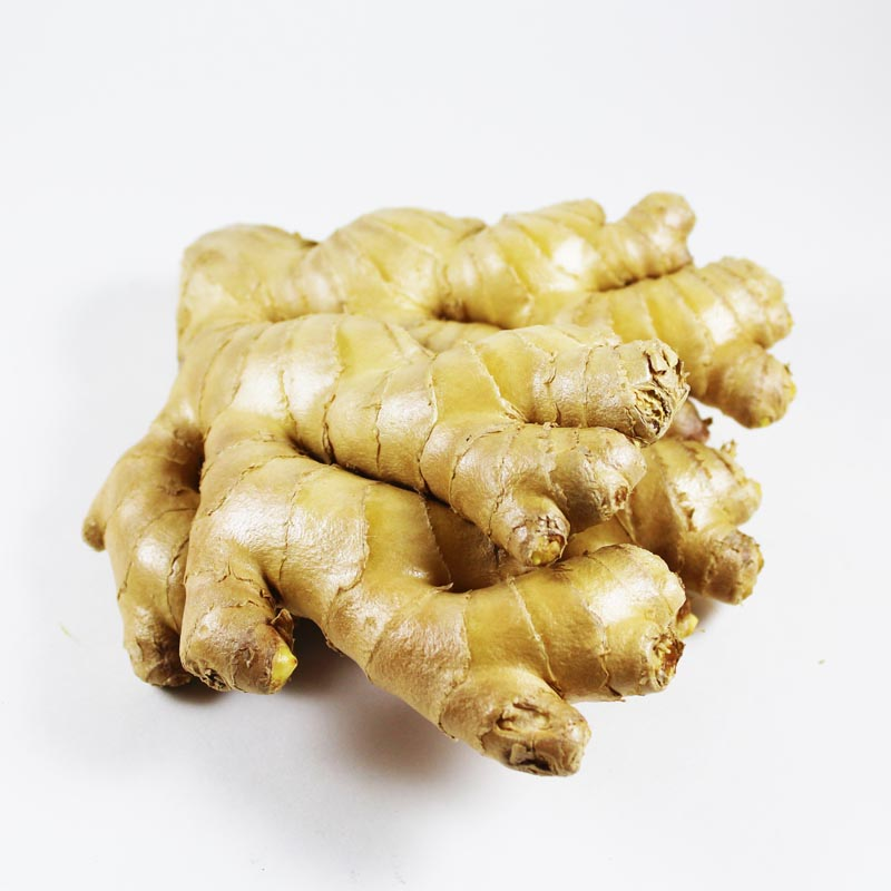 ORGANIC GINGER - Dosner Organic Farms