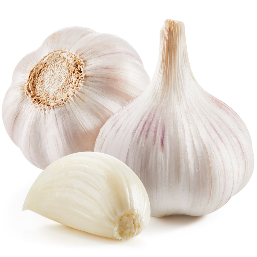 ORGANIC GARLIC - Dosner Organics Farms
