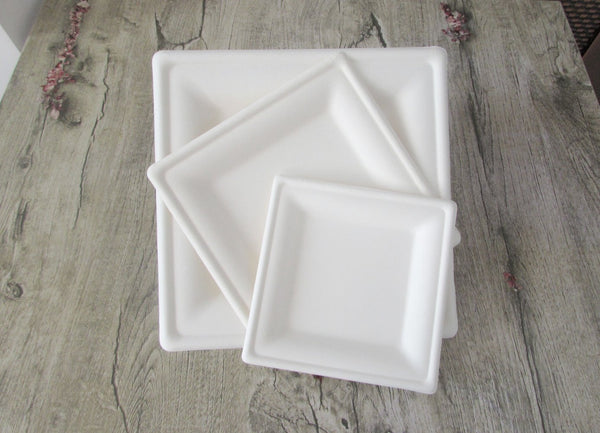 Go-Green Eco-Friendly 100% compostable, Sugarcane Fiber, Disposable 10-Inch Square Plate, 250 Count