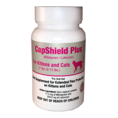 Capshield Cats & Kittens 6ct