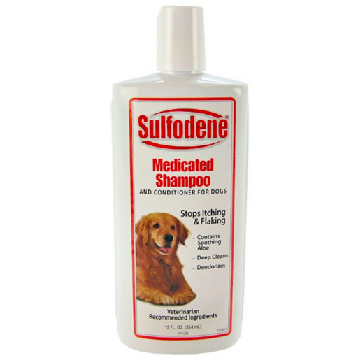 Sulfodene Medicated Shampoo 12oz