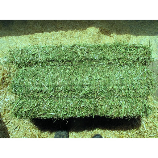 2 String Alfalfa Small Bale