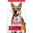 Hills Science Diet Dog Maintence Chicken