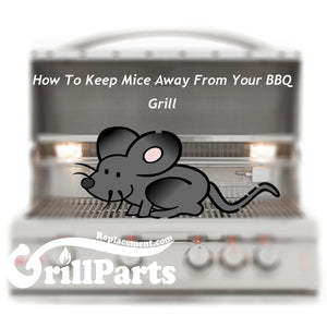 How To Keep Mice Away From Your BBQ Grill