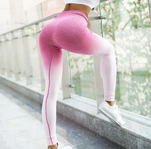 Anti-Cellulite Ombre Seamless Leggings
