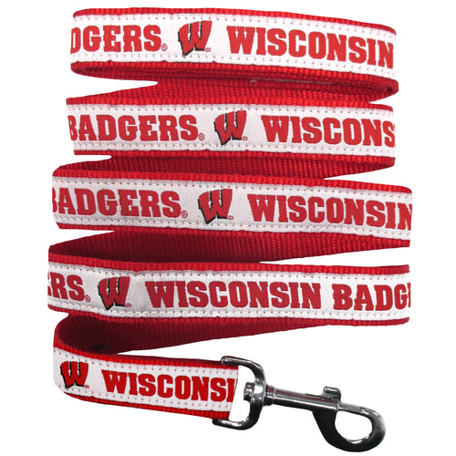 University of Wisconsin Nylon Ribbon Dog Leash
