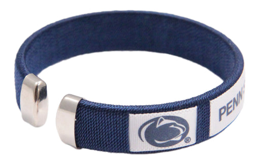 Penn State University Spirit Band