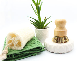 Eco friendly products kitchen brush natural loofah sponge sustainable green biodegradable compostable