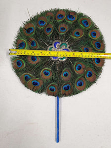S Peacock Feather Fan