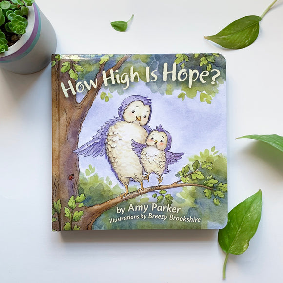 How High Is Hope - tiny-seeds-bookshop-christian-books-for-kids