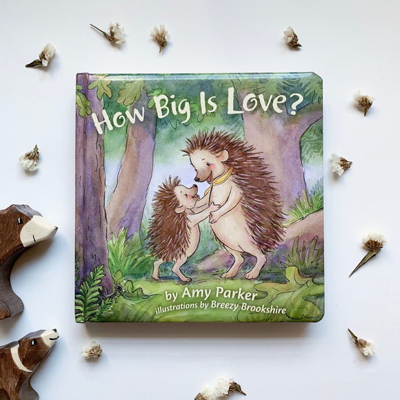 How Big Is Love - tiny-seeds-bookshop-christian-books-for-kids