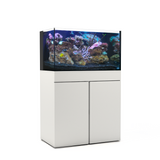JBJ Rimless Flat Panel All-In-One Aquarium 65 Gallon