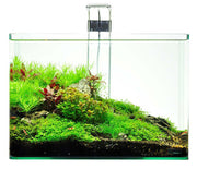 Shrimp King Tank - 10 Gallon Aquarium Starter Kit + Free Set of Postcards by Takashi Amano!