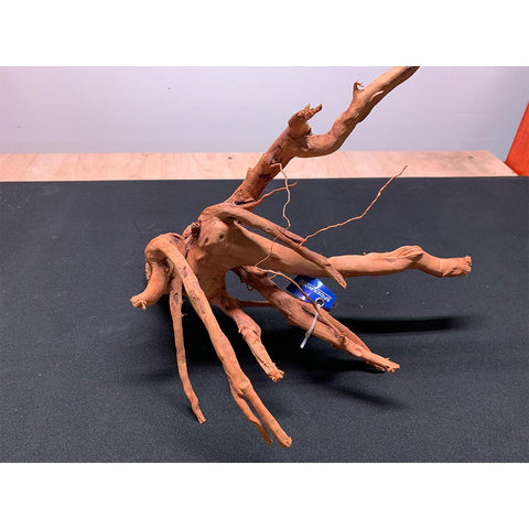 Spider Wood - Large