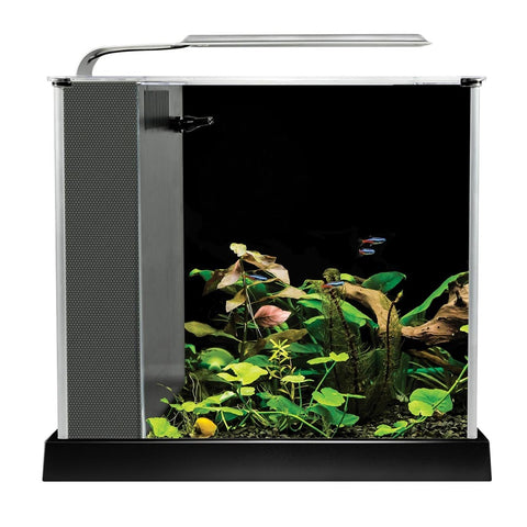 Fluval Spec Aquarium Kit - Black - 10 L (2.6 US gal)