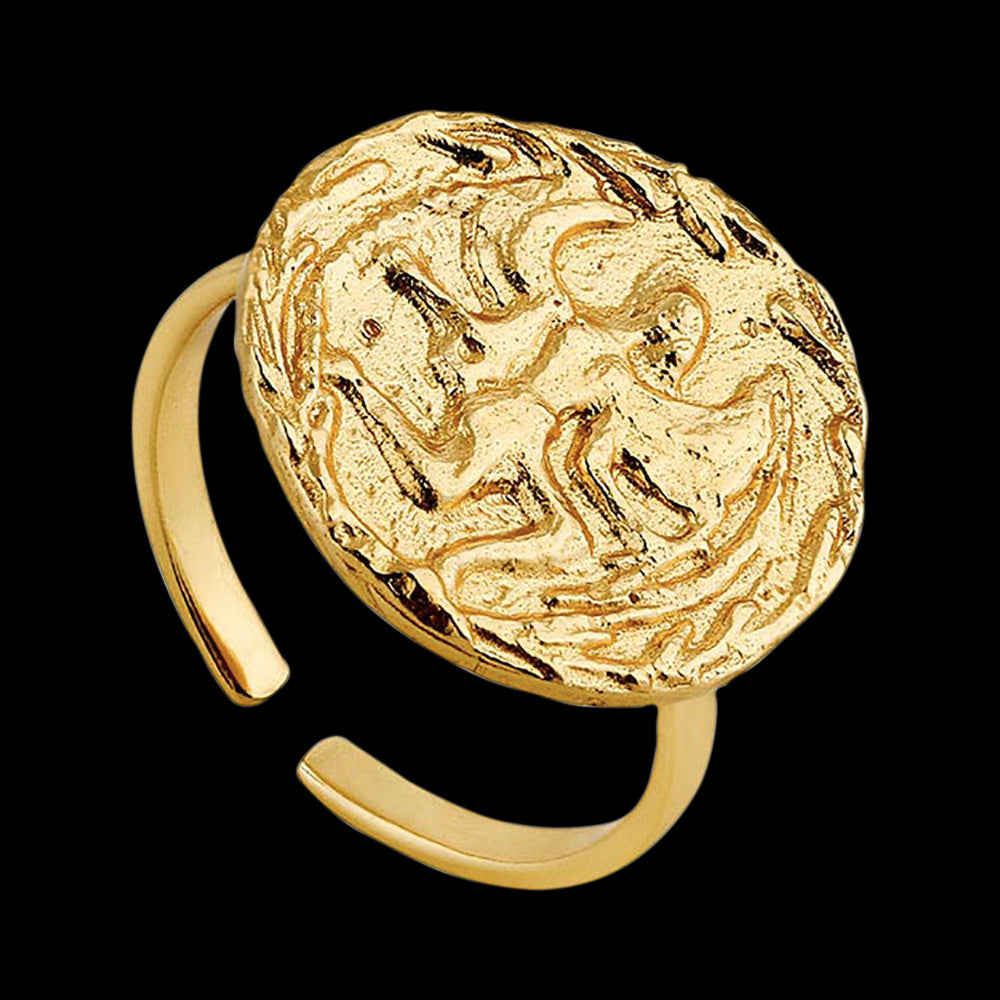 ANIA HAIE COINS GOLD BOREAS ADJUSTABLE RING