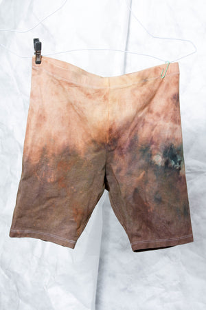 BikerShorts in Rust