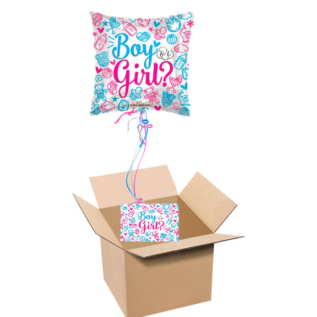 Boy or Girl Gender Reveal Box