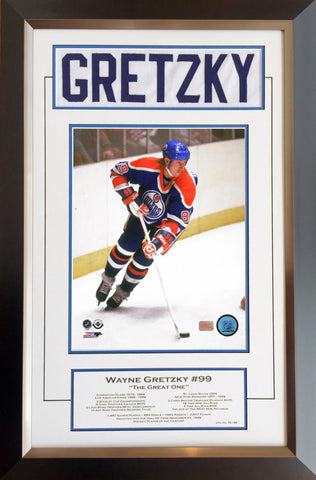 WAYNE GRETZKY CAREER COLLECTIBLE WHITE NAMEBAR - MUSEUM FRAMED - LTD ED OF 99