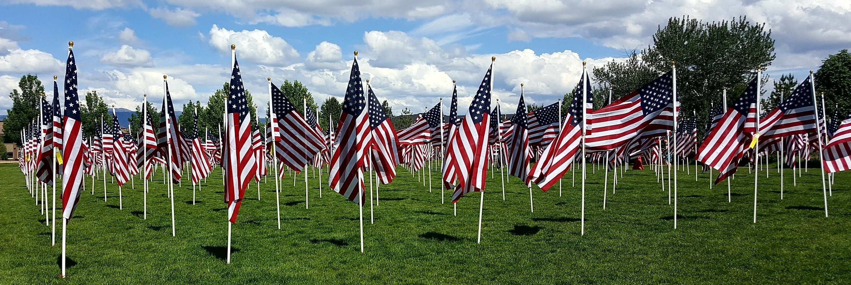 Flags Honoring Our Veterans, panorama