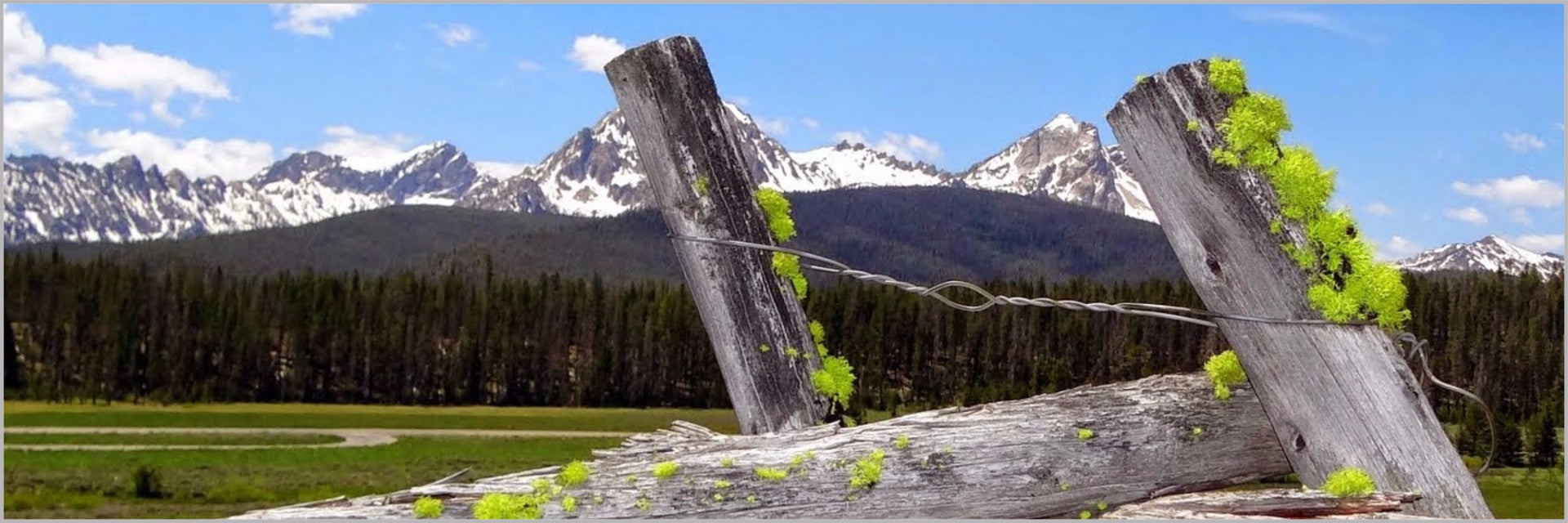 Wall Cling- Sawtooth Mountains & fence