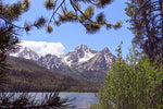 Stanley Lake in Pine Frame