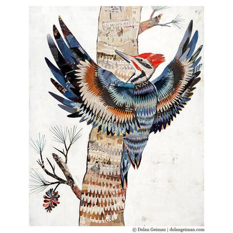 The Great Woodpecker | Archival Print