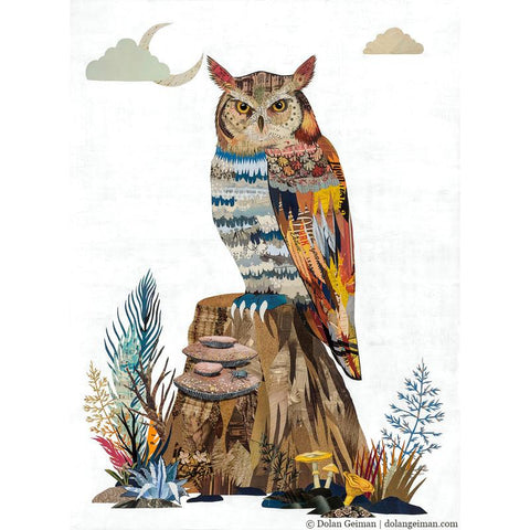 The Visionary Owl | Archival Print