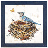 Blue Jay in Nest (Original) - Artisan's Bench