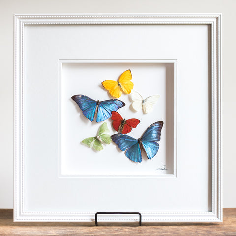 Butterflies in Flight | 16x16""