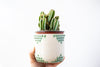 Canyon Turquoise Planter | Medium